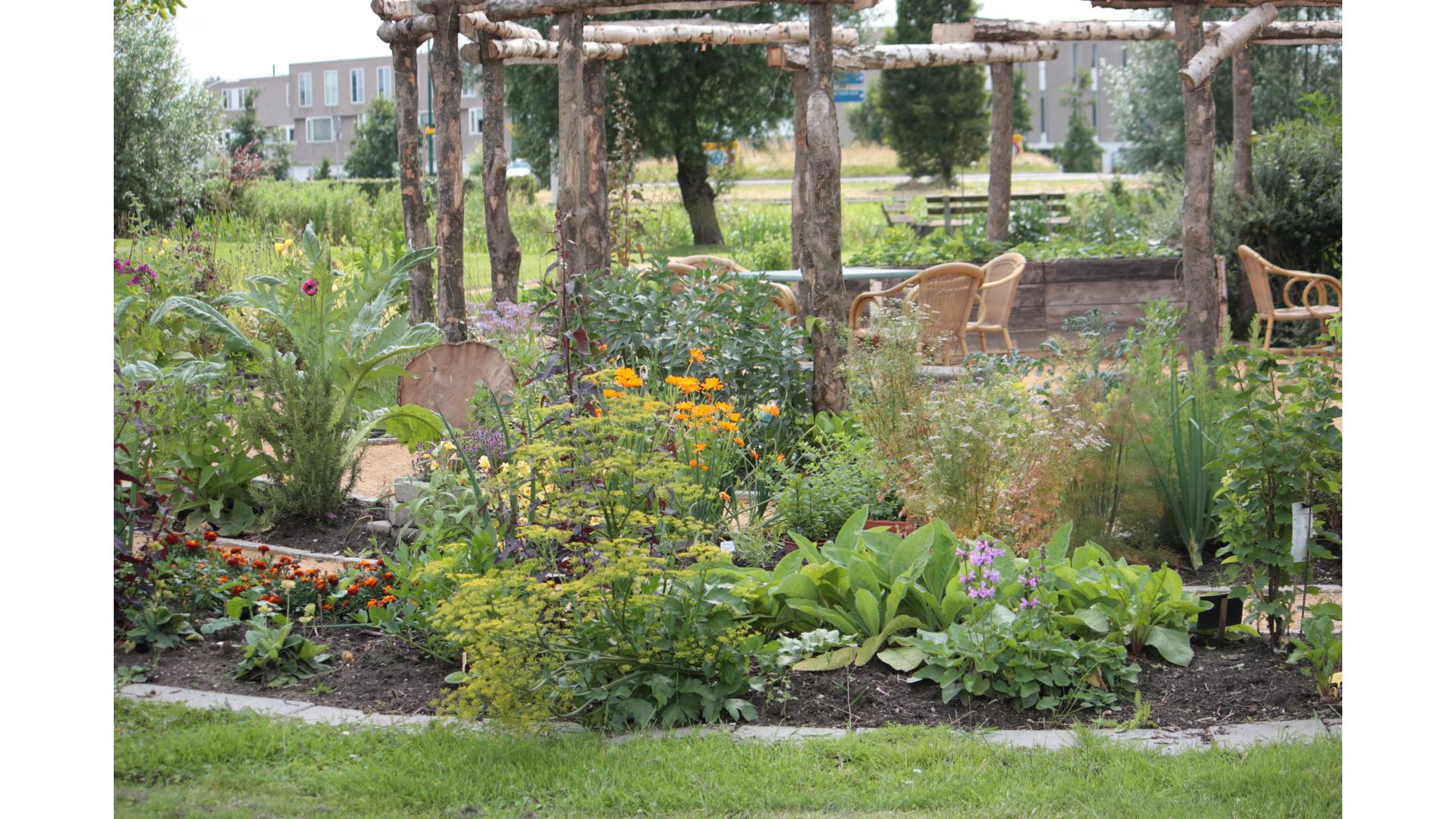 Eetbaar IJsselstein, Hooghe Camp tuin, tuinieren, natuur, IJsselstein, duurzaam, AxionContinu